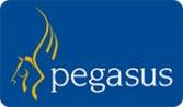 Pegasus Logo - Blog Size